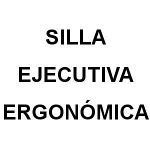 Silla Ejecutiva Ergonomica